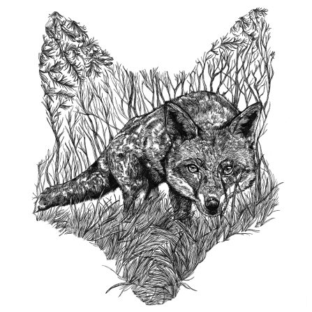 fox-etsy