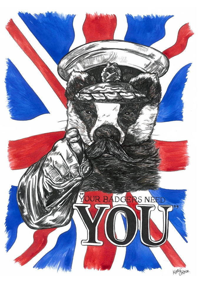 Your Badgers Need You Illustration - Katy Rose