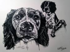 Pen and Ink Pet Portrait